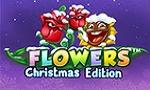 flowers-noel