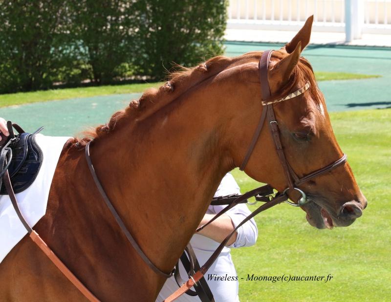 Photos Chantilly 6-05-2016 5642235J6A0812