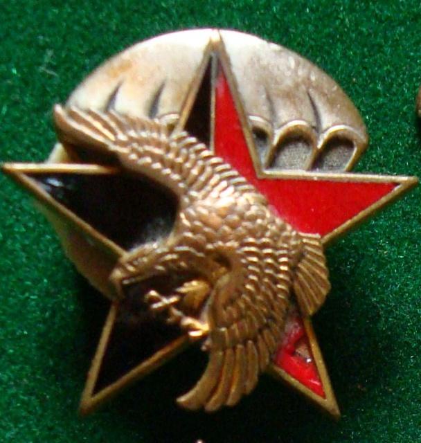LES INSIGNES DU BATAILLON DE CHOC 1943/1963. 56486412meChoc1