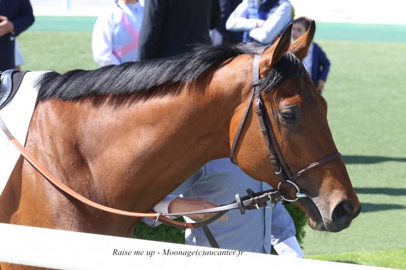 Photos Chantilly 6-05-2016 5658035J6A0983