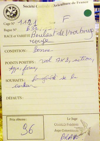2014 - salon de l'Aviculture de Paris du 22/02/2014 au 02/03/214 - Page 5 567706P1130595