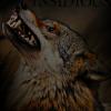 Les images des loups 568700imginsidious