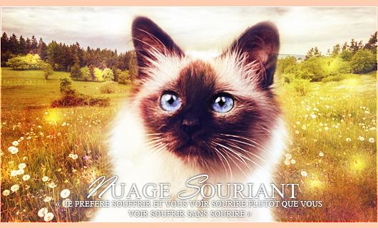 Tutoriel Nuage Souriant [Orange - Photoshop cs6] 571357NuageSouriant