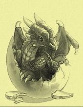 Rang 1 : Dragon Bébé
