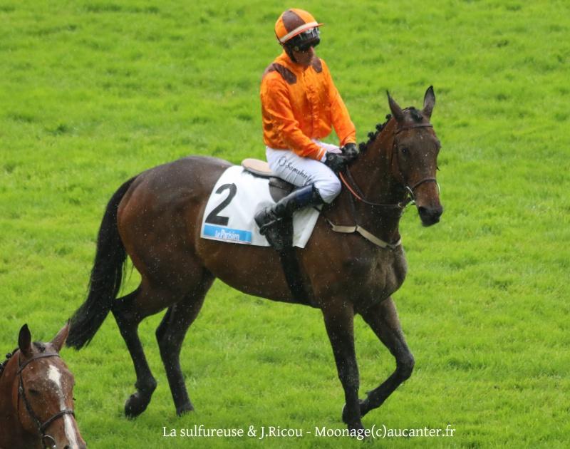 Photos Auteuil 22-05-2016 5761945J6A2683
