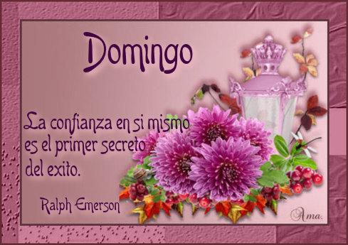 Flores con Frase 580128domingo