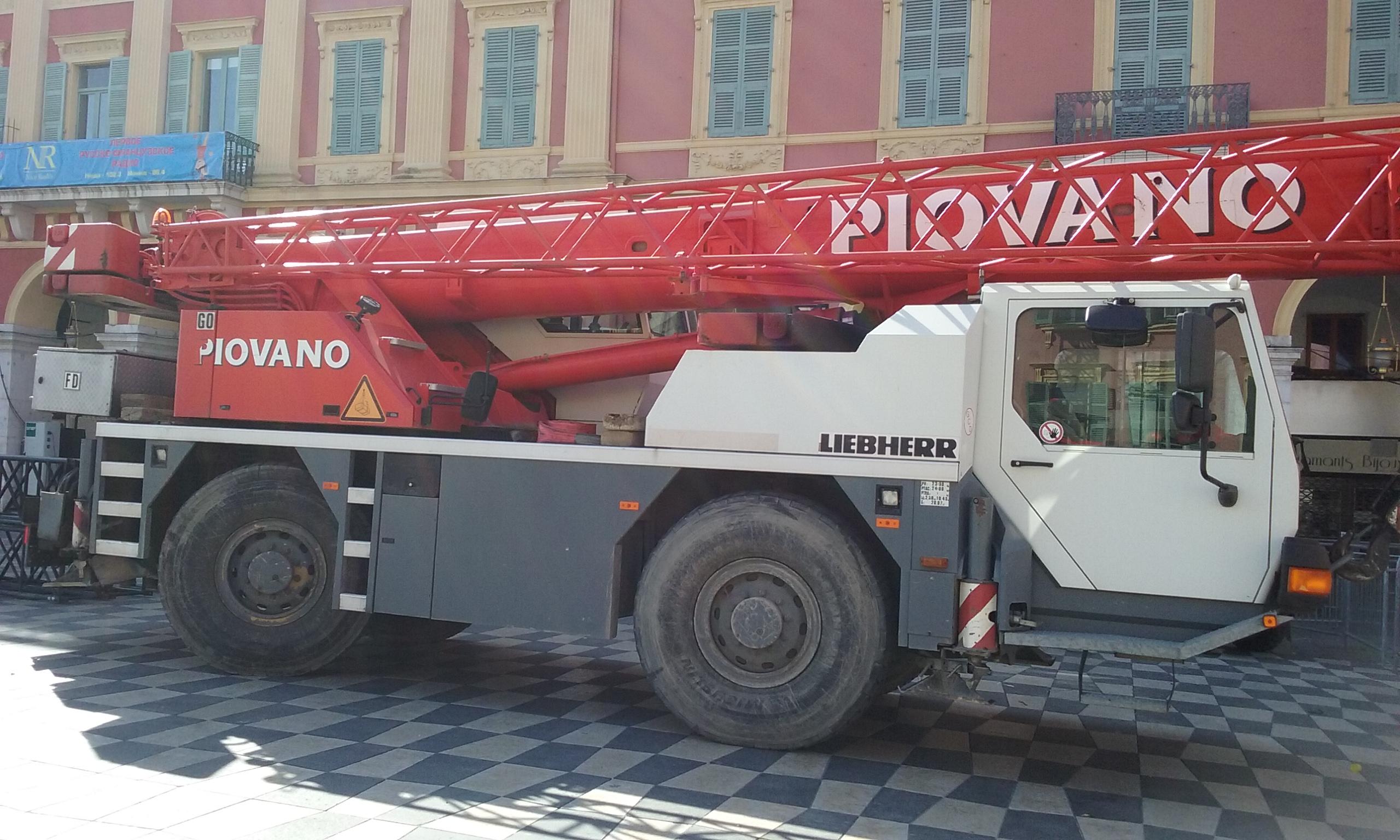 Les Grues de PIOVANO (France & Italie) 58129020160302132811
