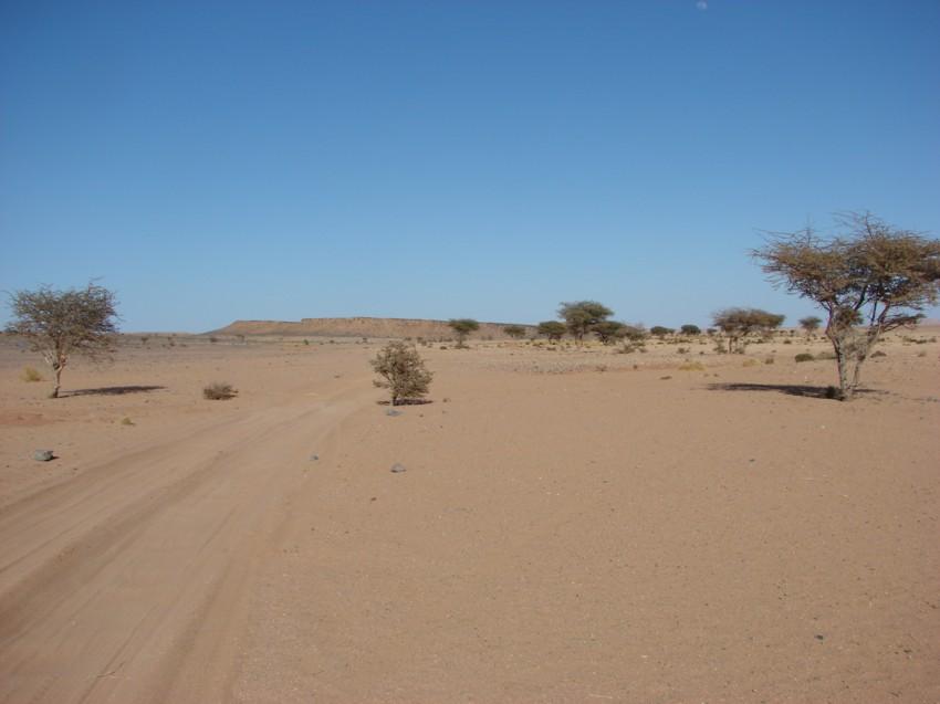 Le Grand Sud du Maroc - II 584647104
