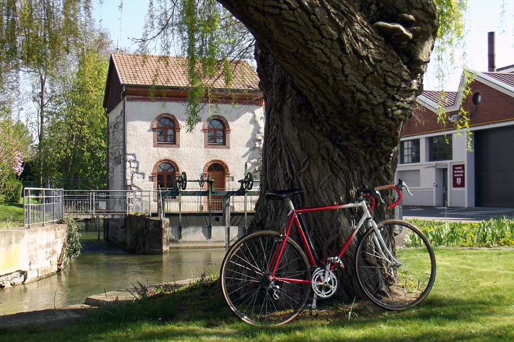 Cyclo-cross Serge Mannheim 585554DSCF4510
