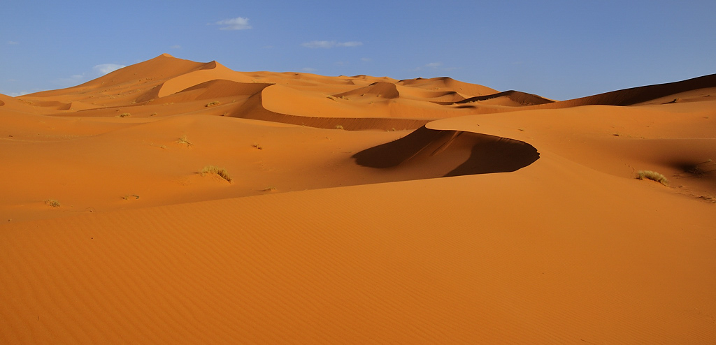 Mes ballades dans le désert de l'Erg Chebbi. 587143DSC2690