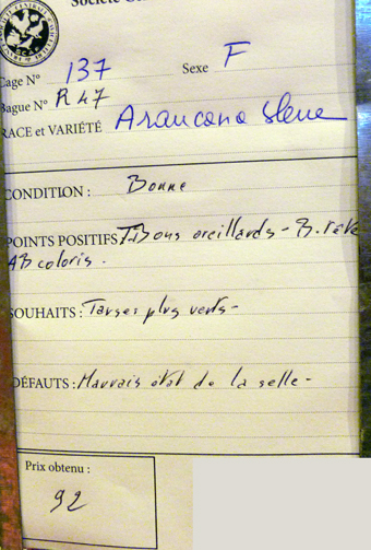 2014 - salon de l'Aviculture de Paris du 22/02/2014 au 02/03/214 - Page 4 591403P1130490