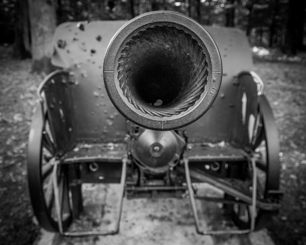 Canons de Belleau 592880IMGP7057