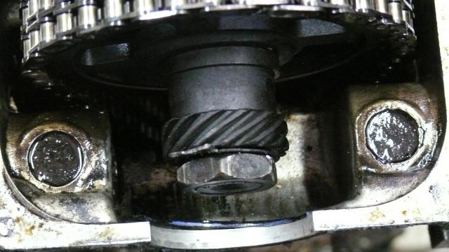 [MAZDA 121] Mazda 121 de Looping - 1978 594409P1060789