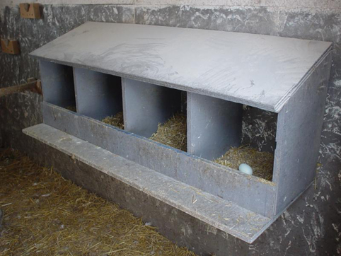 poules - Quelques modèles de pondoirs pour nos poules 594689nestingbox