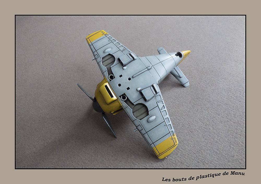 tiger - Bf 109 Tiger Model egg plane-FINI ! - Page 2 5949766444