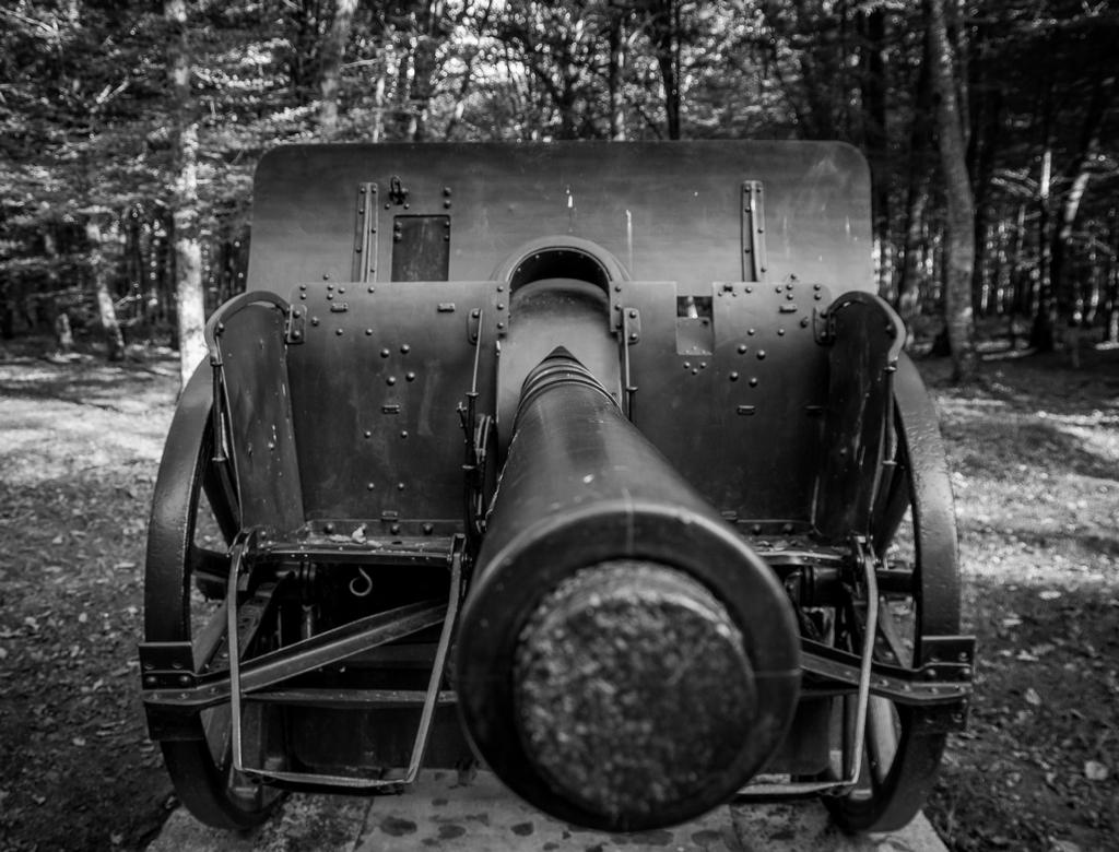 Canons de Belleau 597081IMGP7054