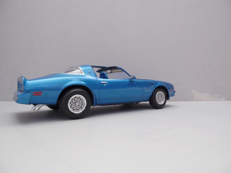 Pontiac Trans-am '78 -1000 jours- 598454SAM7136