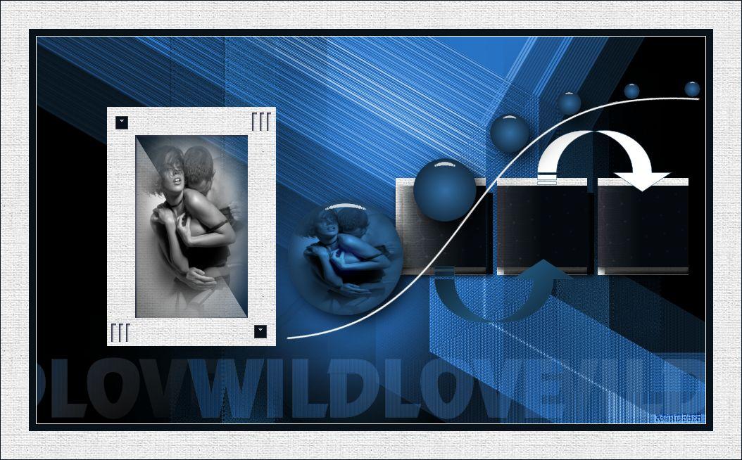 Wild Love 602041atuto
