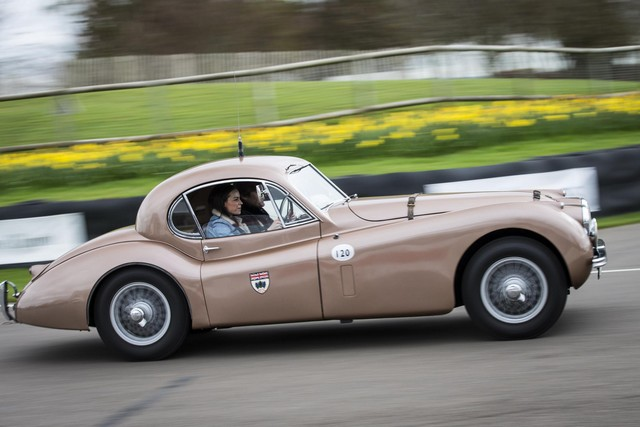 Jaguar Heritage Racing aux Mille Miglia 2014 607046JaguarMilleMiglia20144