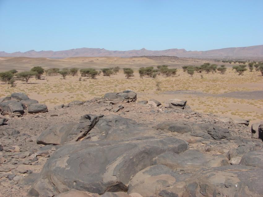 Le Grand Sud du Maroc - II 609095115