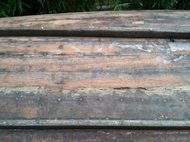 identification d'un canoé, conseils 61059020150915191754