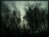 La Forêt de la Frousse