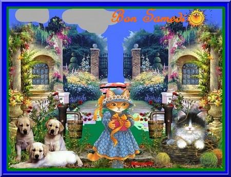 Bonjour bonsoir,...blabla Aout 2013 - Page 3 614211samedi10