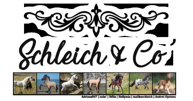 Schleich & Co'
