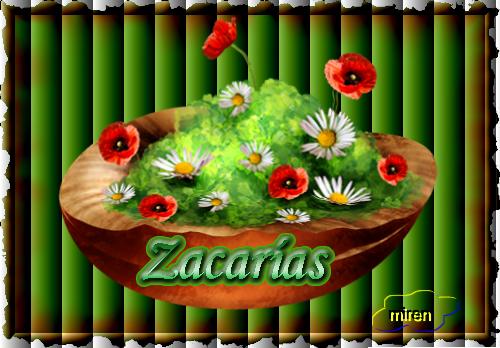 Nombres con Z - Página 2 614584Zacaras
