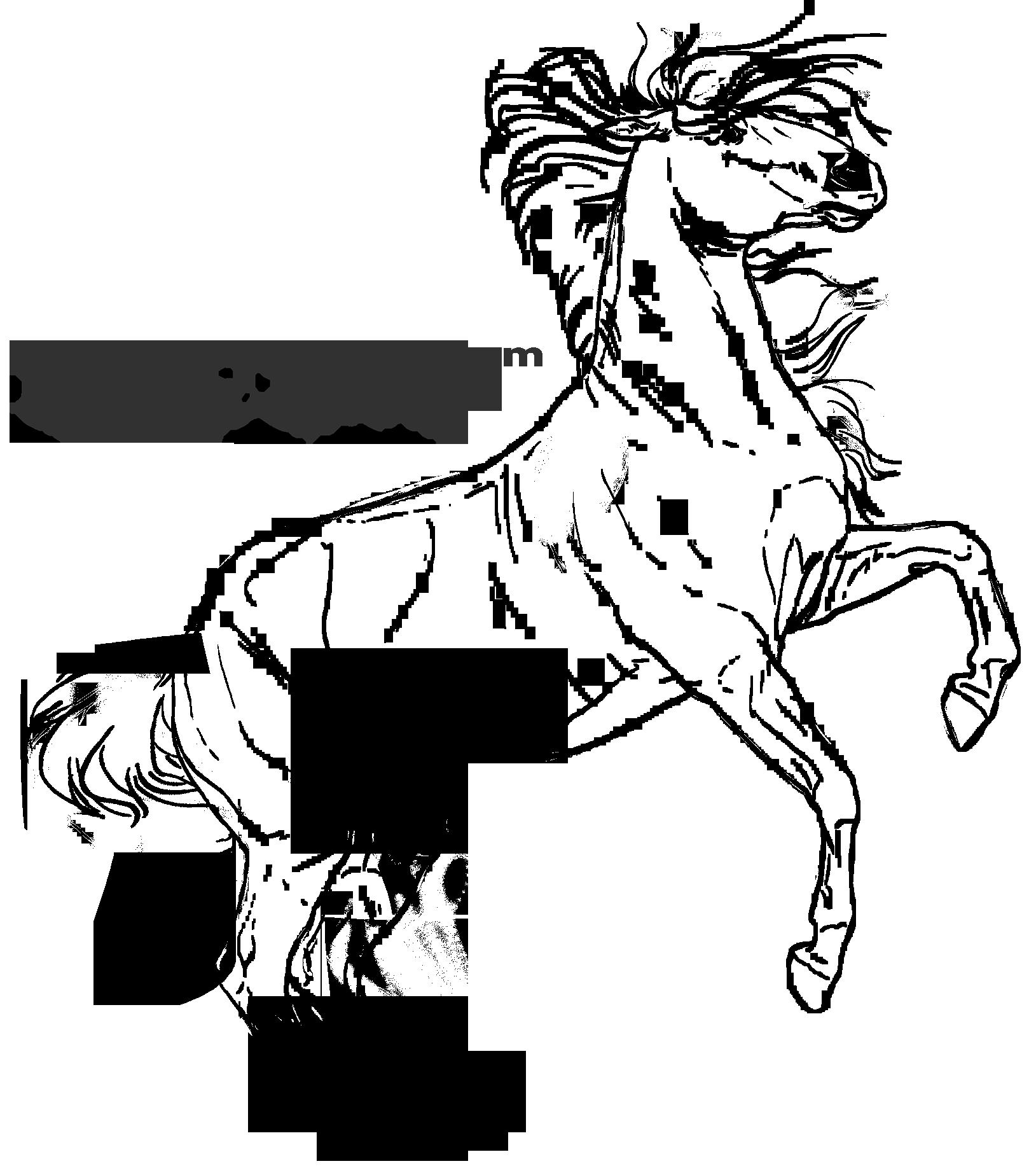 Les bases de Seenae [ED+EC] 29 bases =) 2 NEW (02/05/15)  - Page 7 618177basecabr