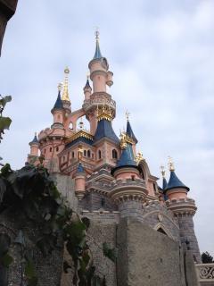 T.R. Séjour Disneyland Paris du 6 au 9 Fevrier 2012 au NPBC 618493100