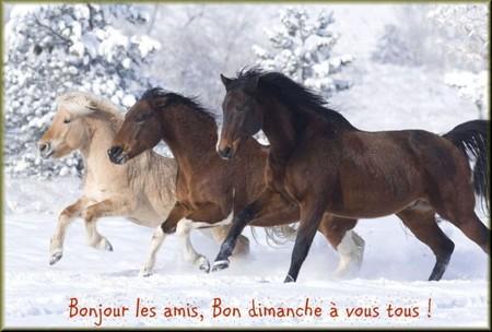 Bonjour bonsoir,...blabla Decembre 2013 - Page 3 621286di200110