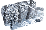 Forêt de Jarnvïdr