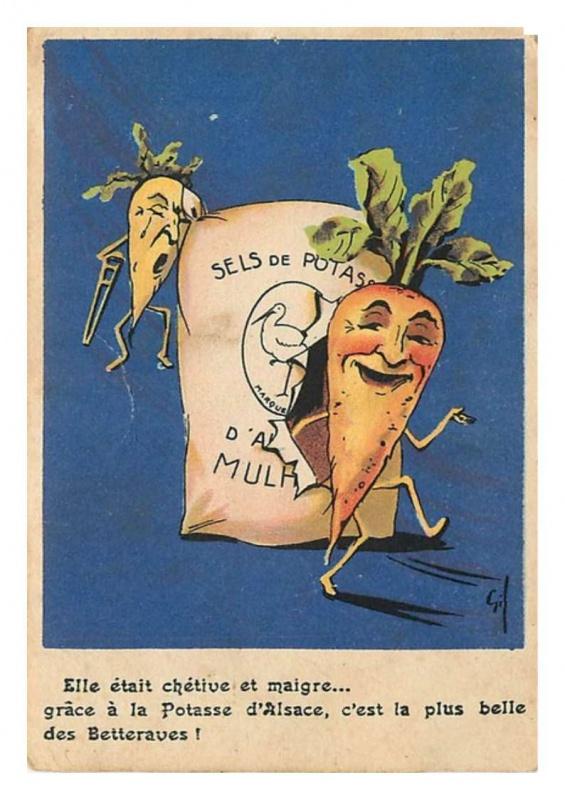 Petite histoire de l'énergie, son rôle en agriculture dans l'histoire - Page 2 623348potasse