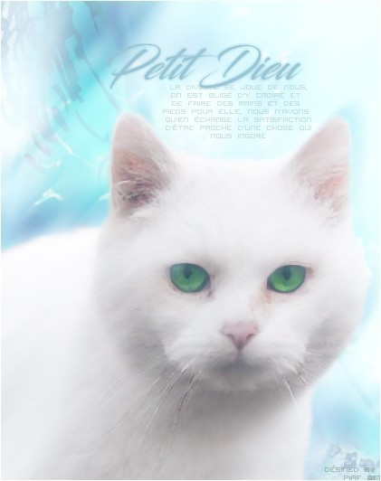 Piaf - ldd 627143510689f2c149af3fde58a2ad057471cb8cd932