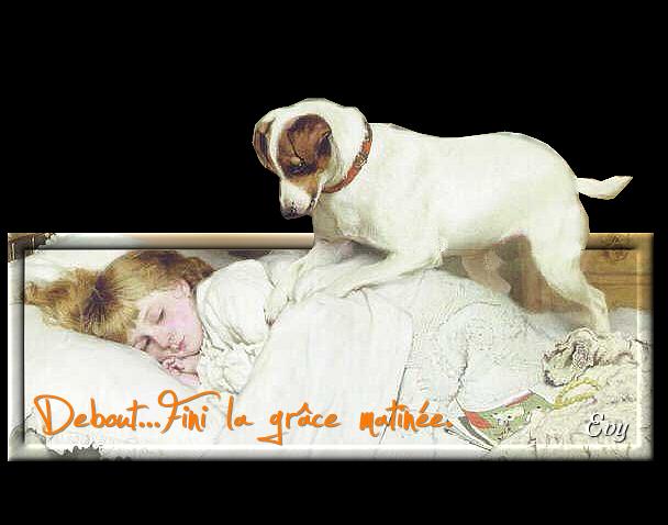 Bonjour, bonsoir..... - Page 4 628139fANGpmGJlHQby1FBx4U1WCPTmSE