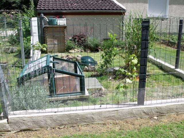 Recherche idées pour construire un enclos en parpaing 629085395