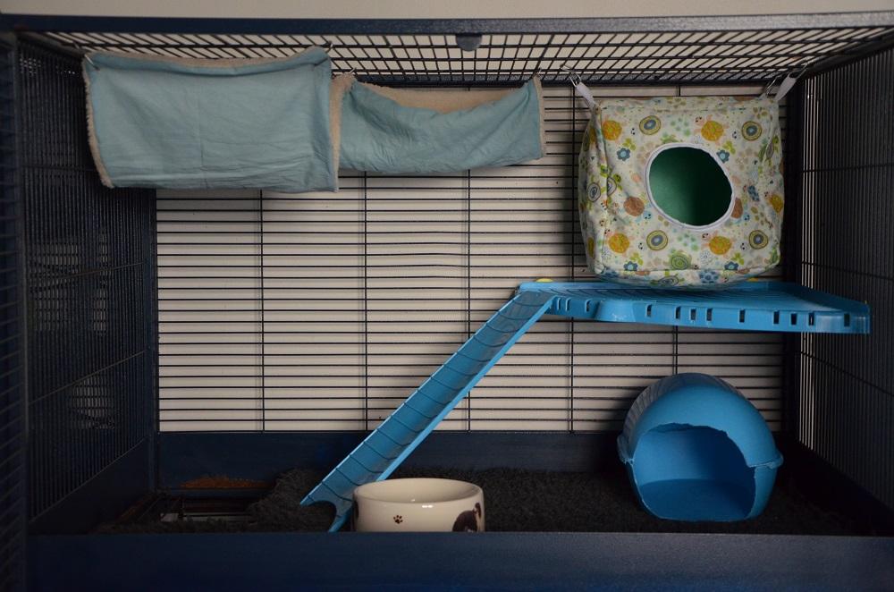 Photos de vos cages - Page 3 631119Royalsuite348