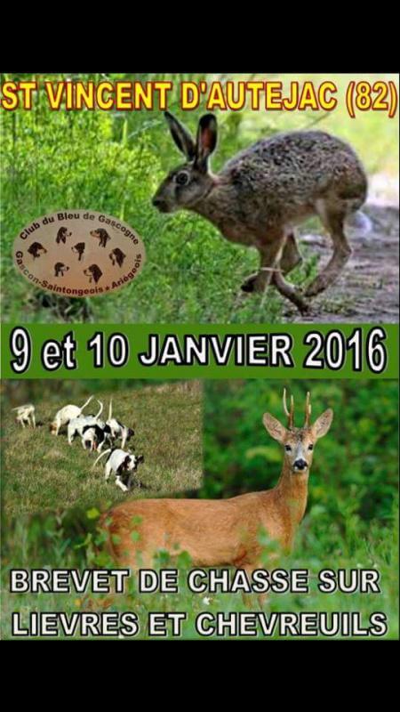 Brevet Saint Vincent d'Autejac (82) dans la voie du lièvre  635125received425956467596912