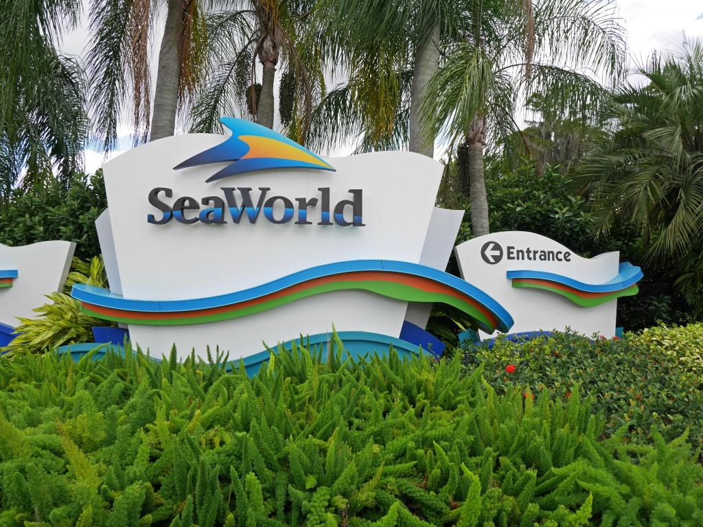 Une lune de miel à Orlando, septembre/octobre 2015 [WDW - Universal Resort - Seaworld Resort] - Page 11 637411P1090356