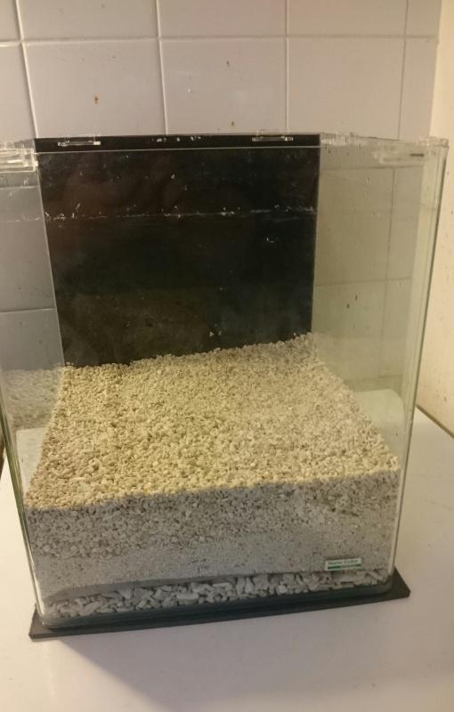 Nouveau projet: nano 30 litres  639065IMG20150728185204