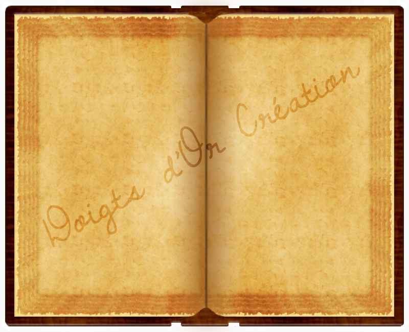 Parchemins, Livres, Cartons d'invitation, ... 640300LivreIcopie
