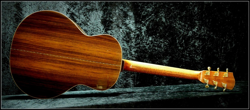projet guitare Darmagnac en cours!! - Page 6 640508193905117710462963952291069663506237896206o