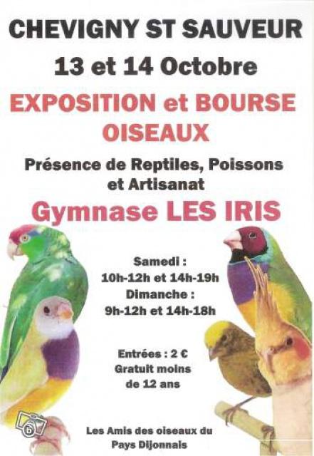 Bourse de Chevigny Saint Sauveur ( 21 ) 643194194329101