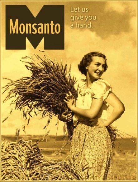 Los productos de Monsanto más peligrosos para la salud 643764Monsanto