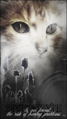 Lily's Shop || Graphisme ♣ - Page 3 644874divergente