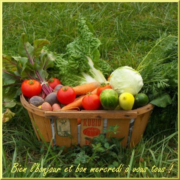 Bonjour bonsoir,...blabla Decembre 2013 645132me080510