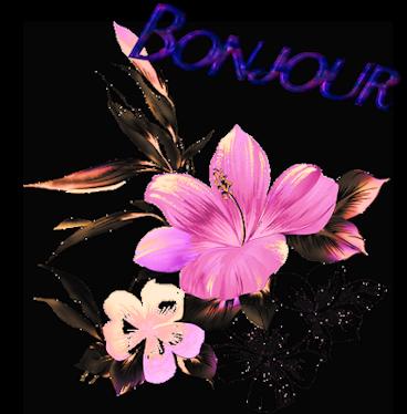 Gifs bonjour  646029REDIPOURAME