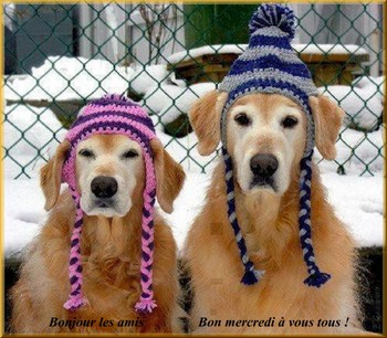 Bonjour bonsoir,...blabla Decembre 2013 - Page 6 649083ME041220132