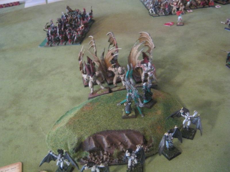 Méga bataille en 3 parties, pour une mini campagne 654918IMG1552